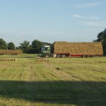 Hay bales loaded on to a transporter