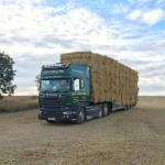 Straw bales loaded on to a transporter for haulage